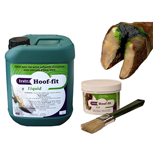 INTRA HOOF-FIT GEL 330ML+PINCEAU